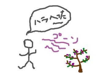 沈丁花.jpg